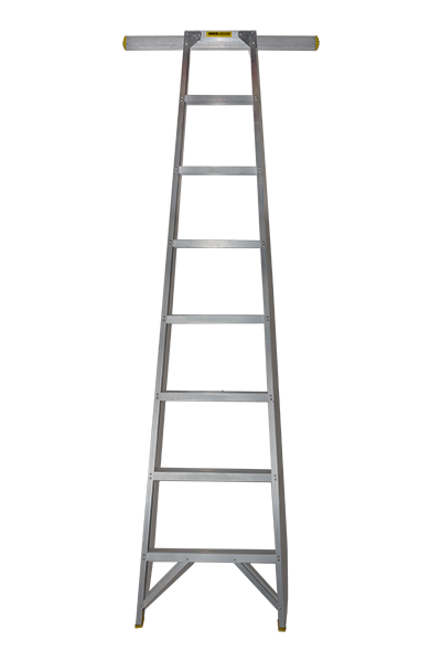 Shelf-Ladder